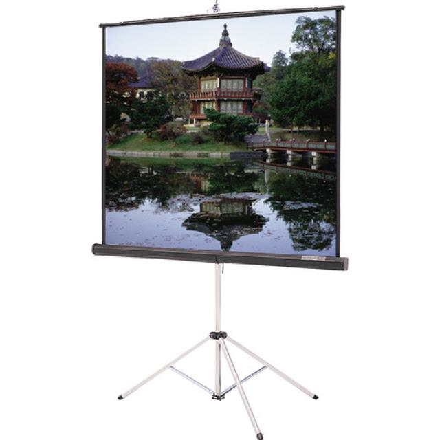 Where to find Projector Screen 96 x96 in New Orleans