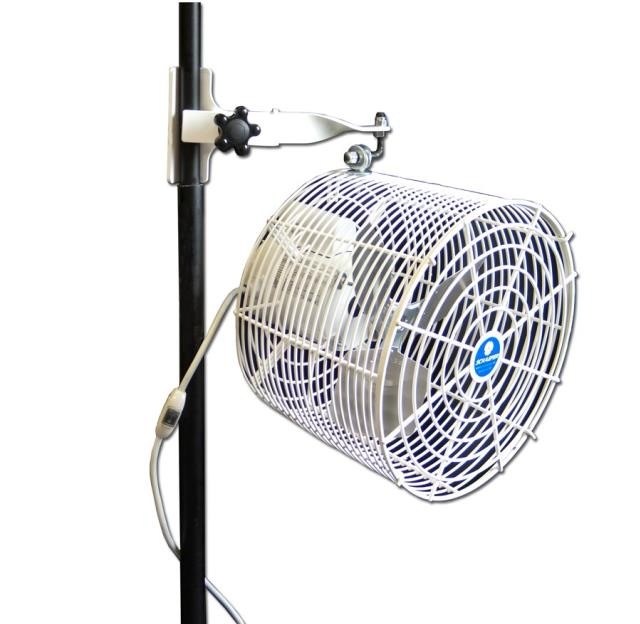 Where to find White 12  Mounted Tent Fan in New Orleans